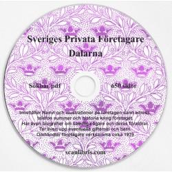 Sveriges Privata Företagare Dalarna